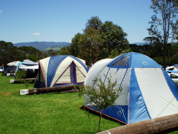 Camping Site Review: Kilallea State Park Campground, NSW