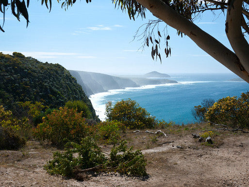 Camping Site Review: Waitpinga Campground, SA