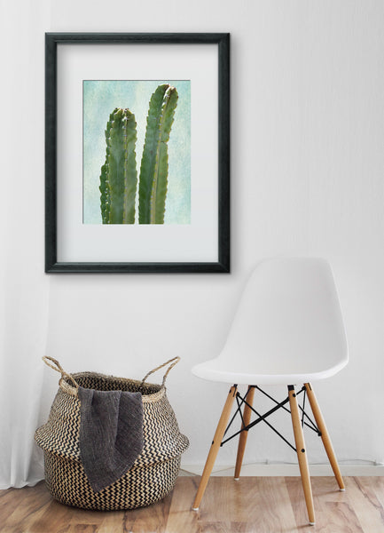 Cactus Art Print - Plate No. 1 available at VJCreatve