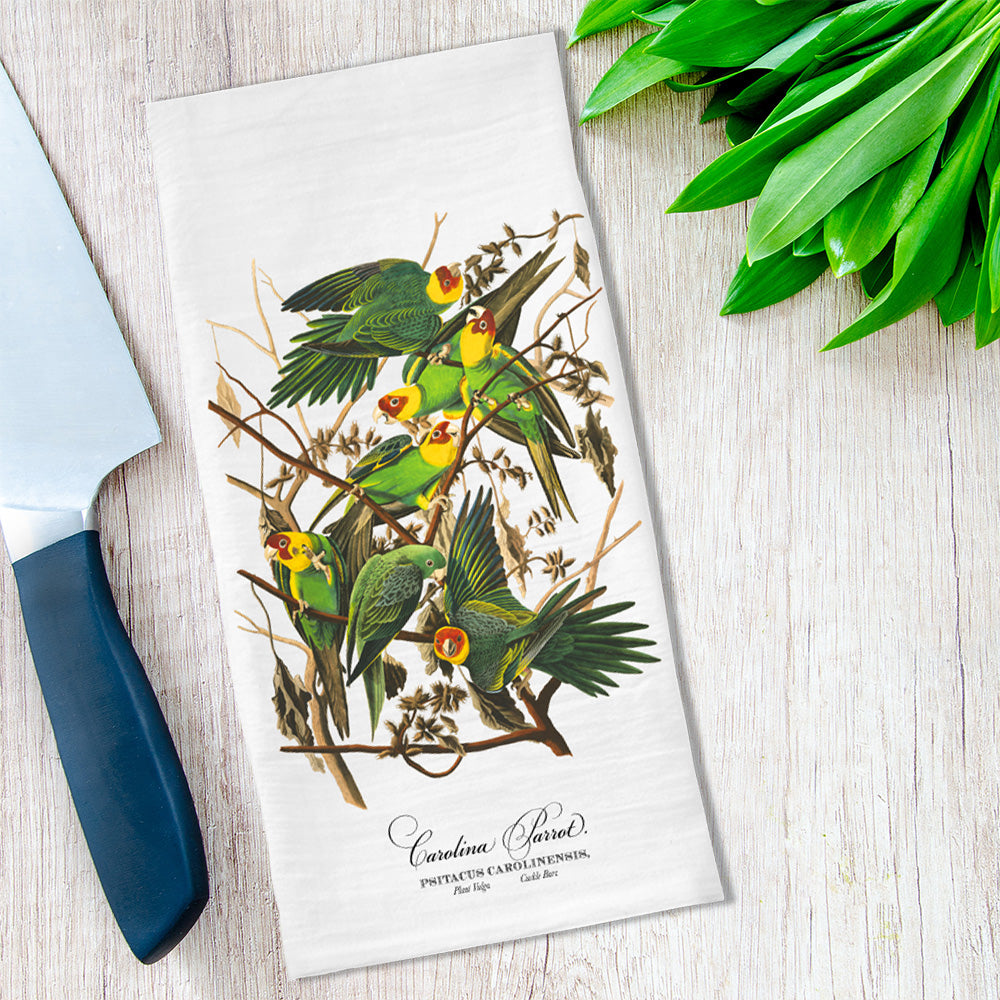 Tea Towels featuring Vintage Audubon Parrots available at VJ Creative Lifestyle