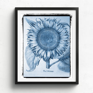 Sunflower Art Print - No. 01 available at Viola Joyner Creative