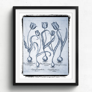 Tulips Art Print - Blue Series No. 02 available at VJ Creative Lifestyle
