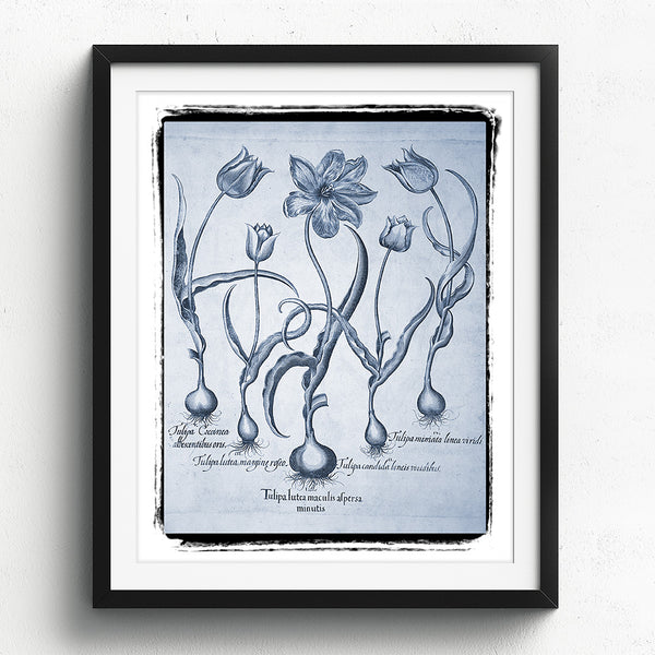 Tulips Art Print - Blue Series No. 03 available at VJ Creative Lifestyle