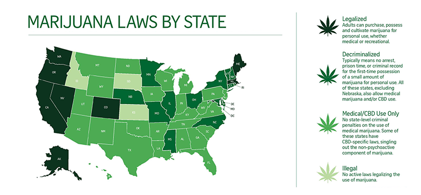 marijuana legalization by state from kickback cold brew coffee