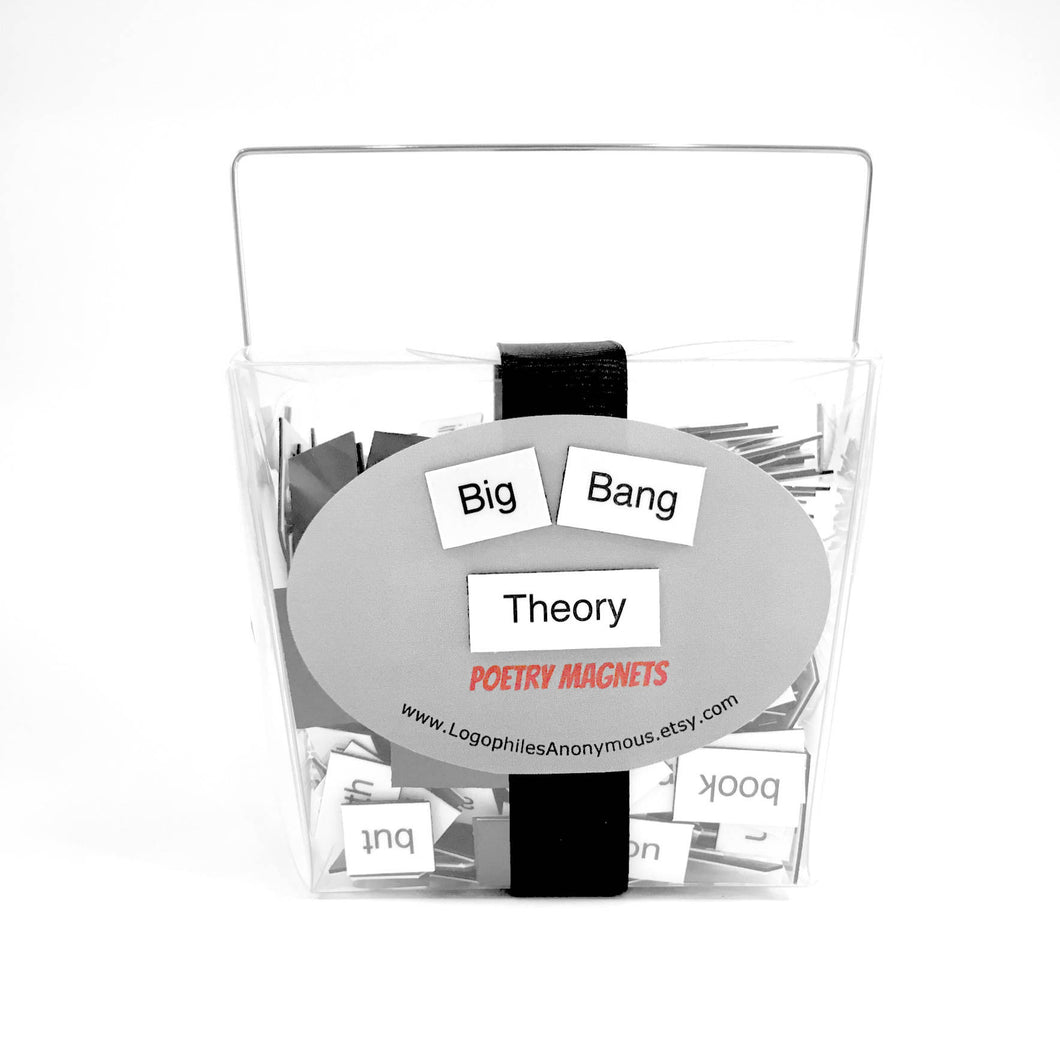 The Big Bang Theory Poetry Magnets