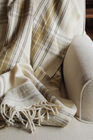 Swiss Cotton Velvet | Blueberry