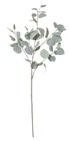 Eucalyptus Leaf Spray