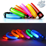 LED Pet Safety Collar