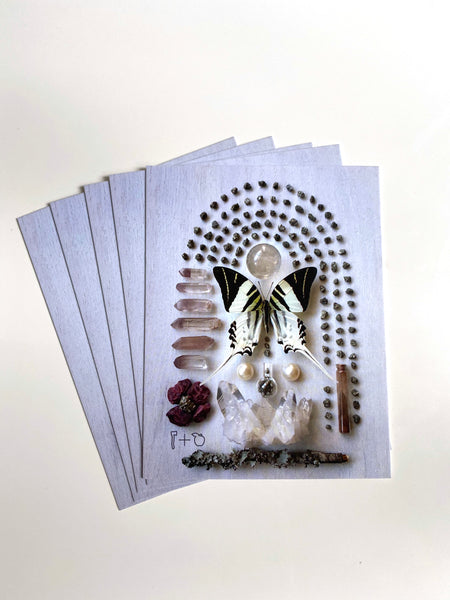 """Transmutation"" Postcard Set of 10"
