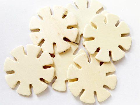 Wooden Shapes Joining Disks