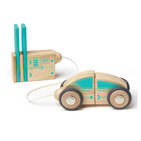 tegu circuit racer car