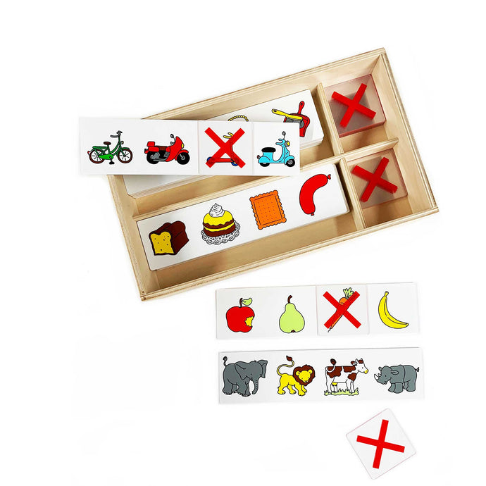 Educo What Doesn't Belong? game in wooden storage box
