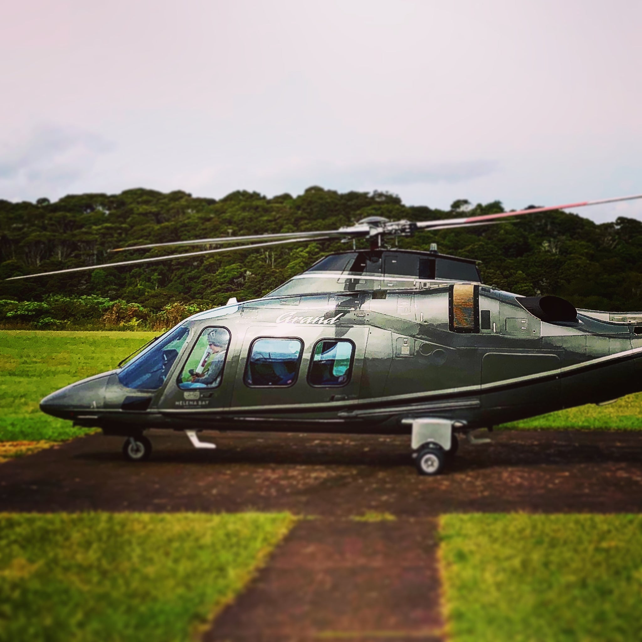new zealand premium tour luxury private cutomised tailor-made bespoken tours art food wine nature hiking exploring tours waiheke island auckland helitranz helicopter