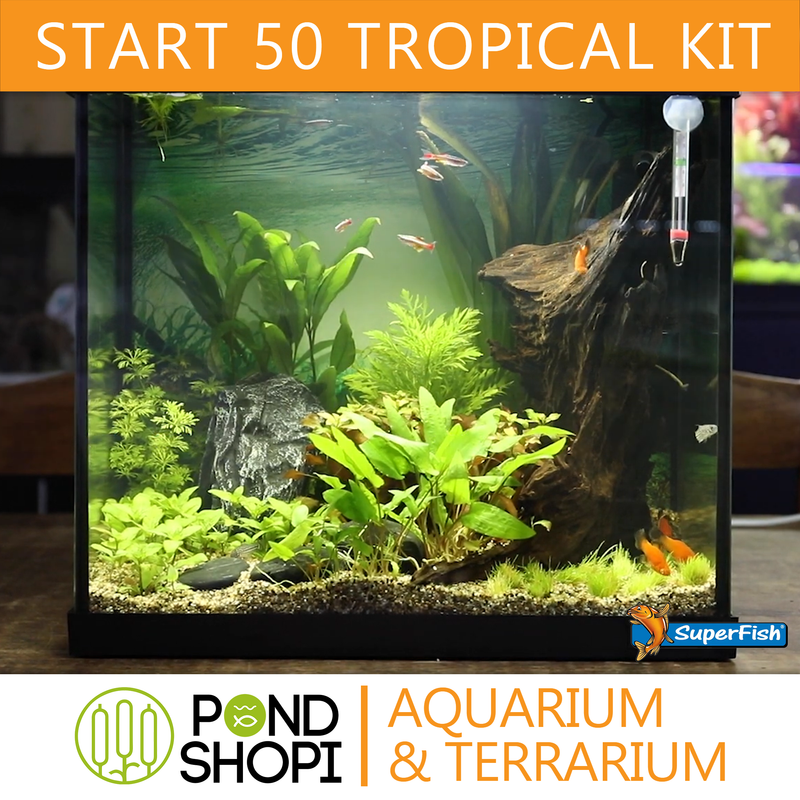 SF START 50 TROPICAL KIT NOIR