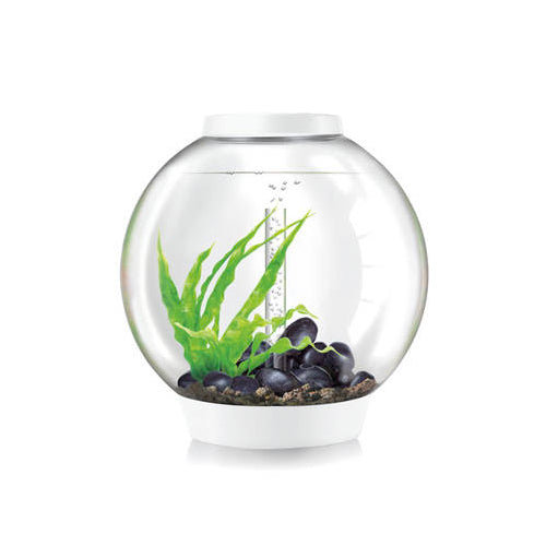 Aquarium Biorb Classic 60 Led Blanc