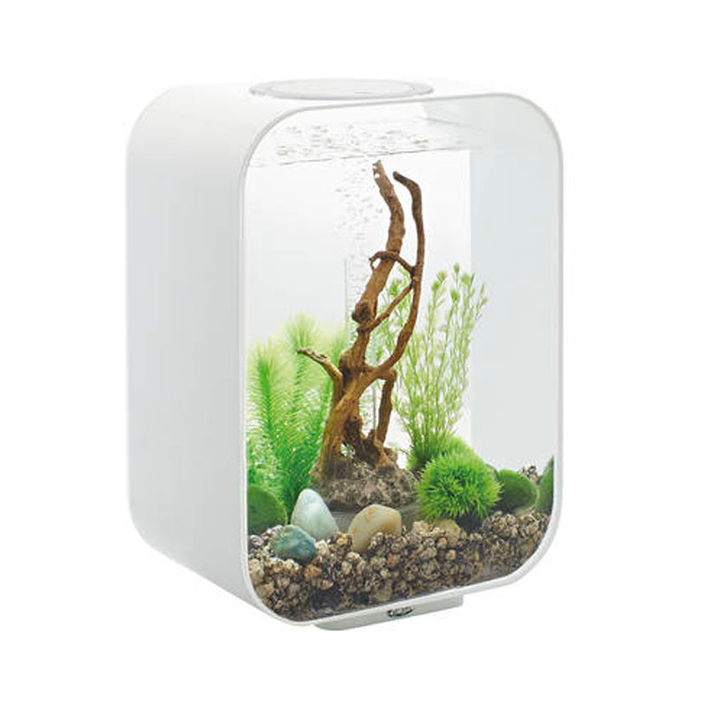 BIORB LIFE 15 LED BLANC AQUARIUM