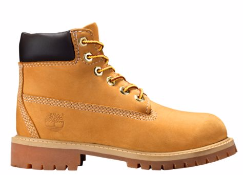 Timberland Junior 6-Inch PREMIUM Waterproof Boots