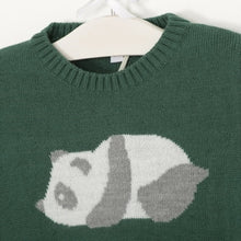 Green Jumper With Panda Bear
