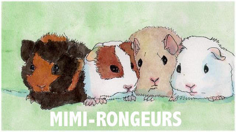 Mimi-rongeurs