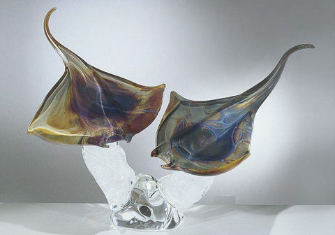 Murano glass stingrays in Calcedonio
