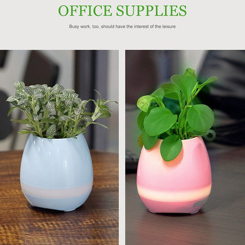 Office Desk Bluetooth Flower Pot with LED