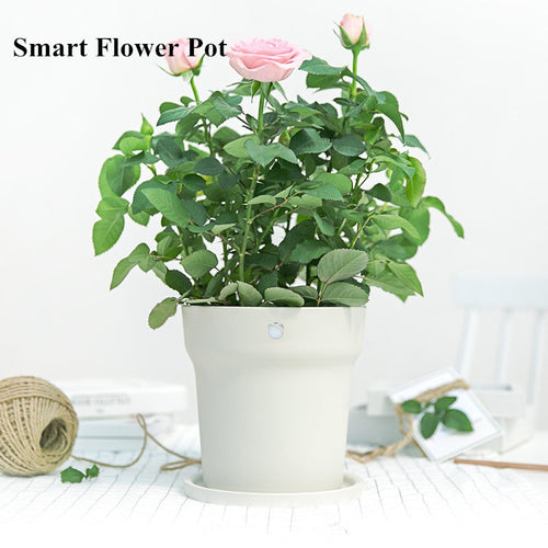 Smart Flower Pot with Smart Soild Controller and Bluetooth speaker