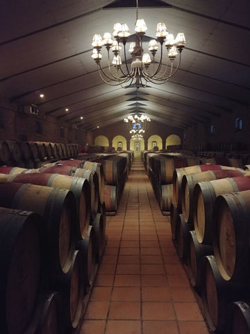 Cellar Tour at Waterford Wine Estate