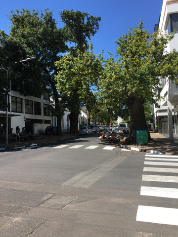 Street view in Stellenbosch