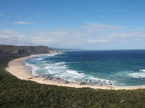6 Day Garden Route Tour From Cape Town to Mossel Bay