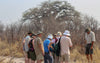 Guided walking tour, Botswana