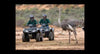 Quad Bike Safari In Cullinan (Gauteng, South Africa)