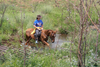 Tours Africa, Horse Riding, Horseback, Cullinan, adventure, teambuilding