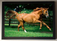Horse Picture Wall Clock framed