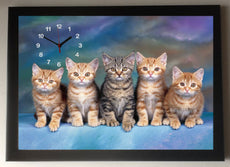 Tabby Kittens/Cats Picture Clock framed