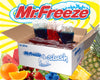 MR FREEZE SLUSH MACHINE SUMMER KIDS THIRST QUENCHER