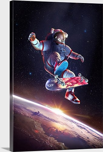 Bitcoin Kickflip Astronaut Mounted Canvas, 20