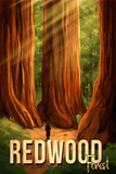 SKU: REDWOOD Hike Redwood National Park Travel Poster