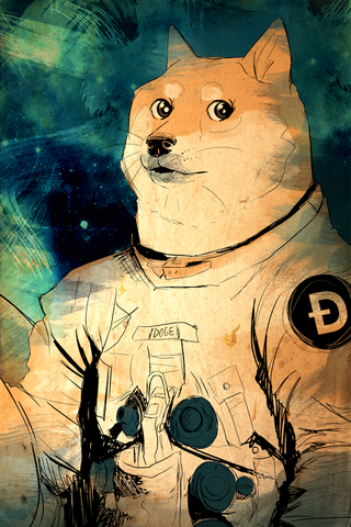 Doge Metallic Print, Limited to 10