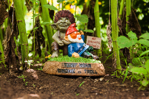NOT YOUR AVERAGE GARDEN GNOMES