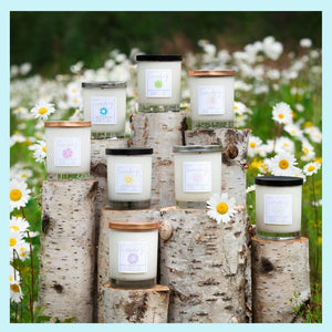 SIGNATURE COLLECTION