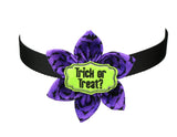Trick Or Treat on Purple Bats Large Dog Bow