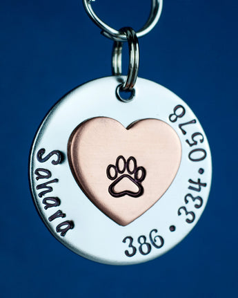 "1"" Stainless Steel Custom Pet ID Tag"