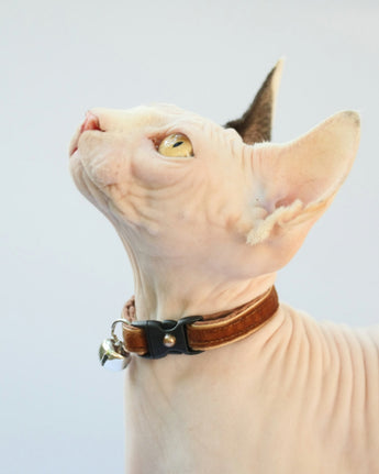 Cocoa Brown Velvet Cat Collar
