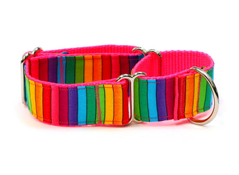Bright Rainbow Stripes Whippet Collar