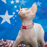 American Flag Stars Cat Collar