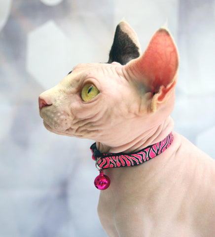 Neon Pink Tiger Stripes Cat Collar