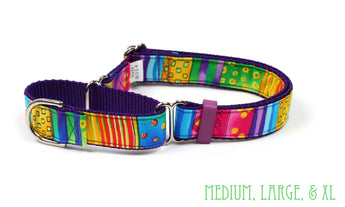 Happy Go Lucky Stripe Martingale Dog Collar