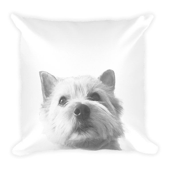 Kaiju Throw Pillow
