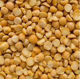 yellow pea