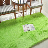 Anti-slip 80x120cm Thick Large Floor Carpets For Living Room Modern Area Rug